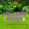 Welcome Baby Yard Letters -