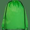 Lime Green - Bag