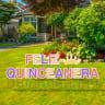 Pre-Packaged Feliz Quinceanera Birthday Yard Letters - Quinceanera
