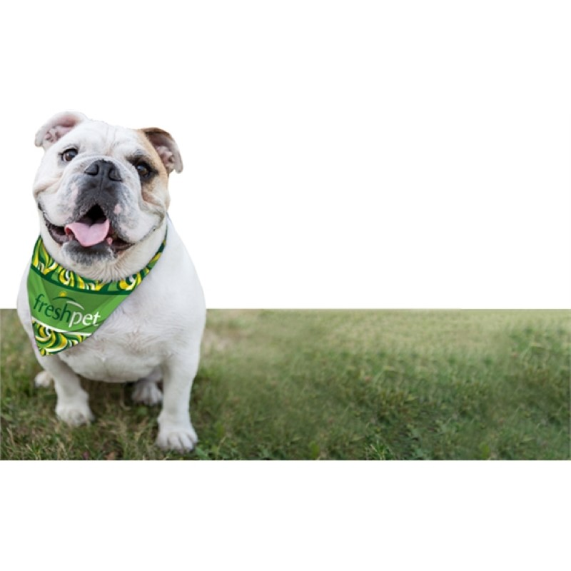 Full Color Dog Bandannas